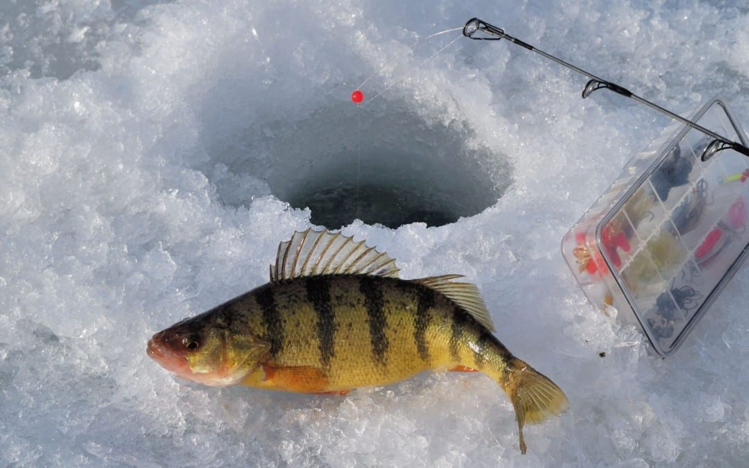 Ice Fishing Reports More Severe Types of Injuries - El Paso Chiropractor