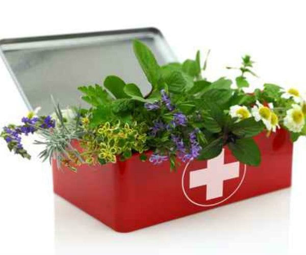 Conventional and Holistic Medicine: Getting the Best of Both Worlds