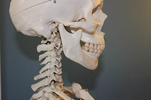 Patient Guide To Bone Growth Stimulation