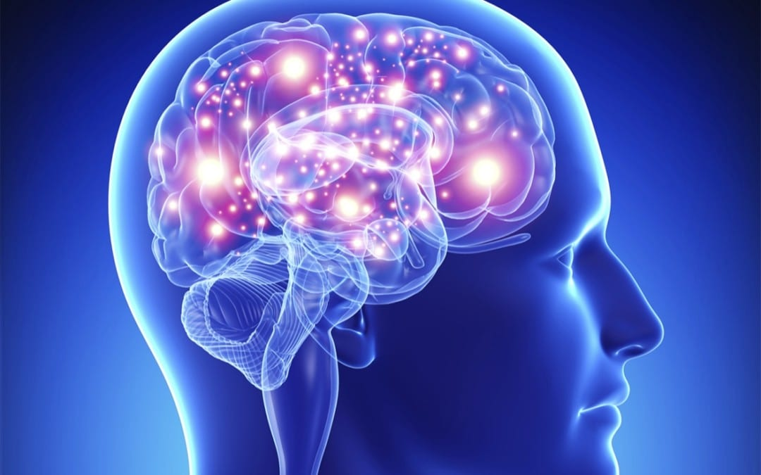 Chiropractic Can Tune Up The Brain