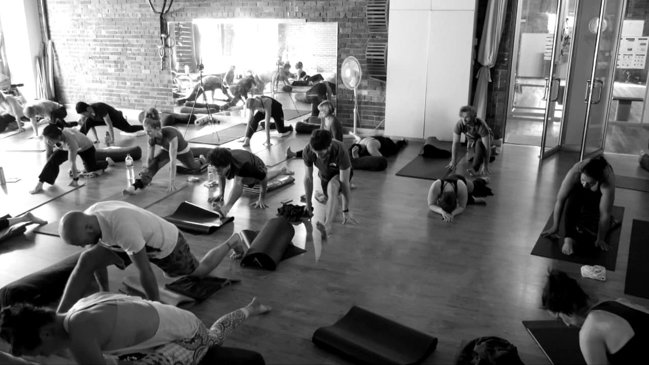 people stretching studio