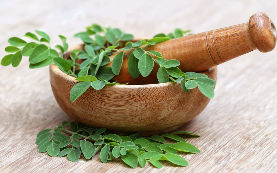 Moringa- Prevent Cancer, Diabetes, Cure Asthma, Boost Energy & Potent Natural Antibiotic