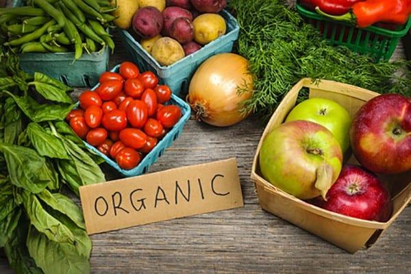 Organic Diet: 5 Reasons Why