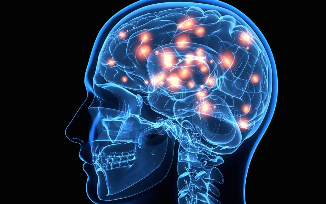 Structure and Function of the Cranial Nerves in El Paso, TX