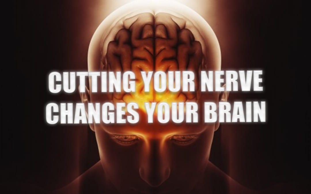 Cutting Your Nerve Changes Your Brain   El Paso, TX.