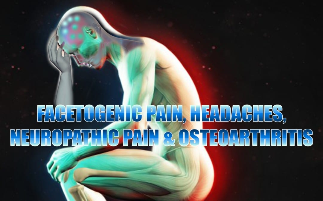 Facetogenic Pain, Headaches, Neuropathic Pain And�Osteoarthritis