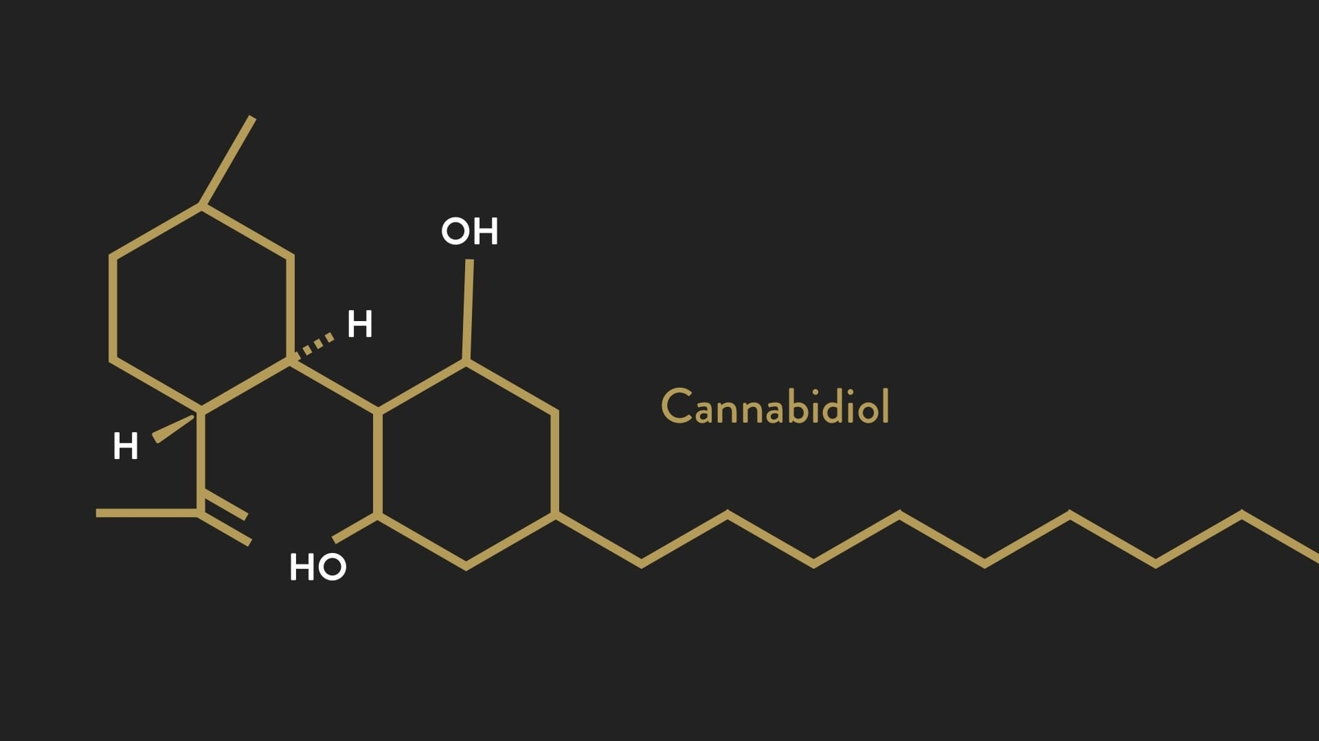 Supporting the Endocannabinoid System | El Paso, TX Chiropractor