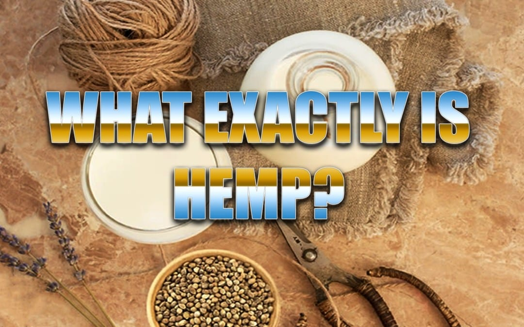 Hemp, What Is It Exactly?