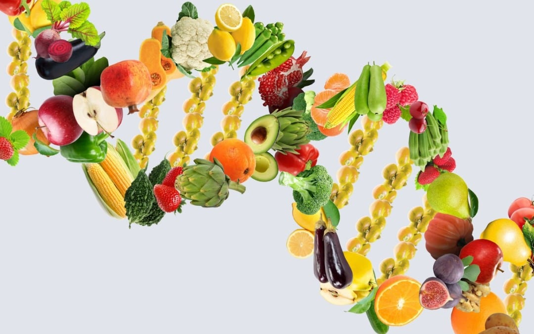Understanding DNA Methylation Deficits
