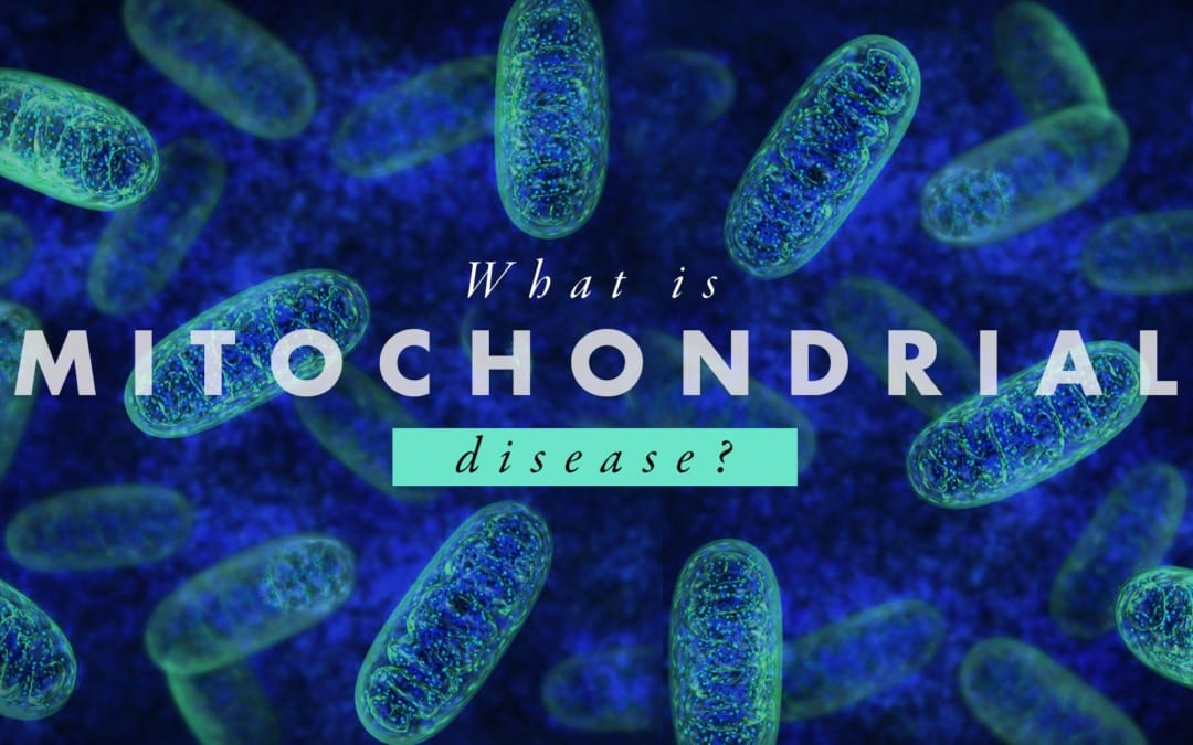 What is Mitochondrial Disease?