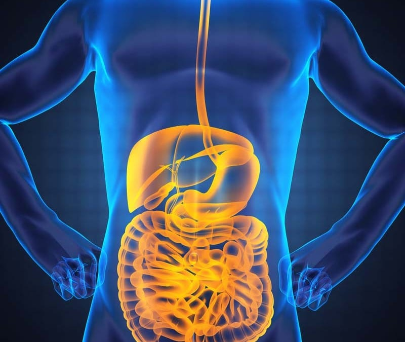 The Microbiome Functions and Functional Medicine Part: 3 El Paso, Texas