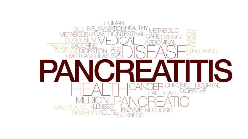 Functional Endocrinology: Pancreatic Digestive Disorder