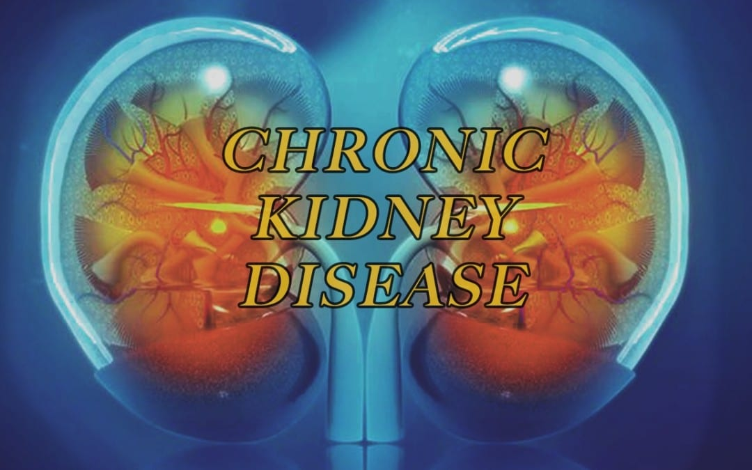 The Role of Dietary Fibers and CKD