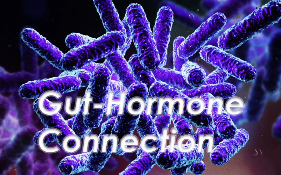 Functional Endocrinology: Normalizing the Gut