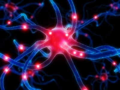 Functional Endocrinology: Prostaglandin Balance