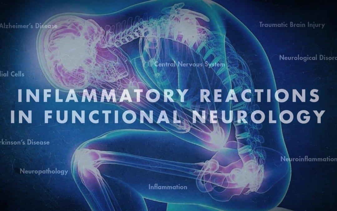 Inflammatory Reactions in Functional Neurology | El Paso, TX Chiropractor