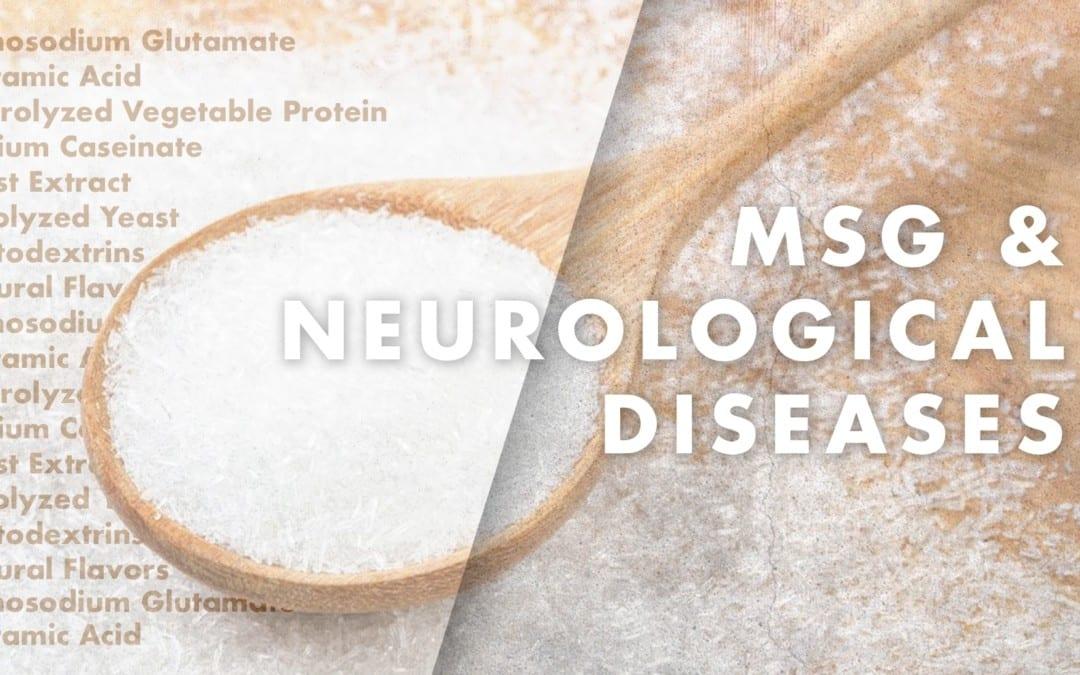 Functional Neurology: MSG and Neurological Diseases