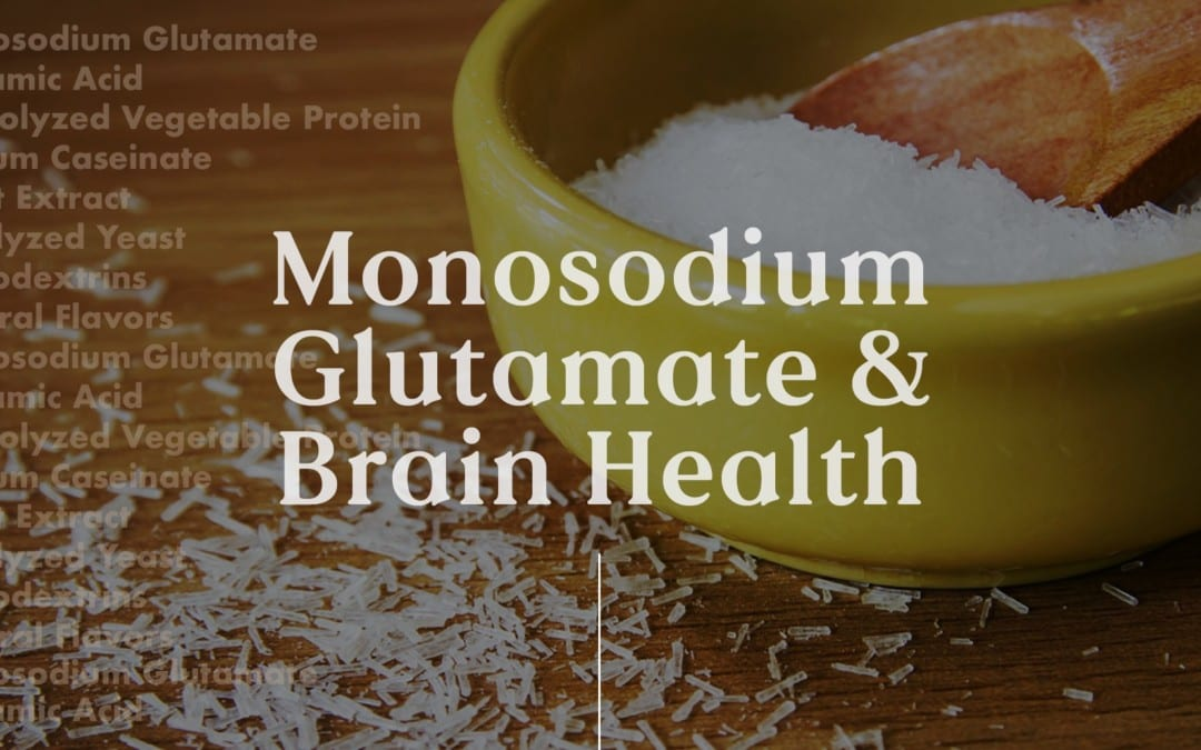 Functional Neurology: Monosodium Glutamate and Brain Health