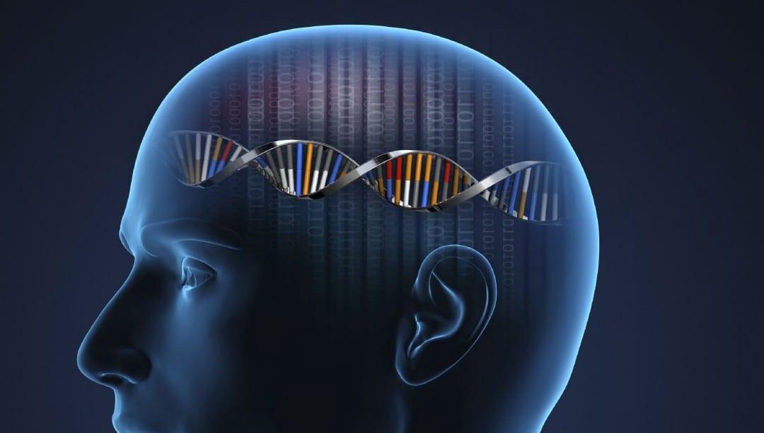 Functional Neurology: Nrf2 Activation for Neurological Diseases