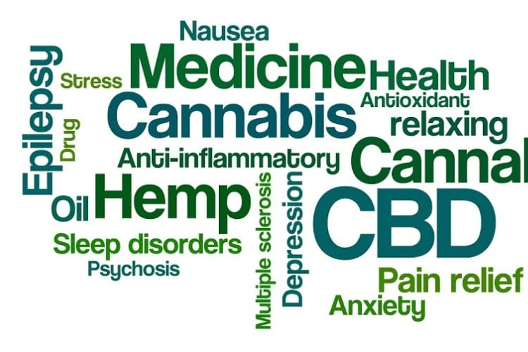 Functional Endocrinology: The Endocrine System and CBD