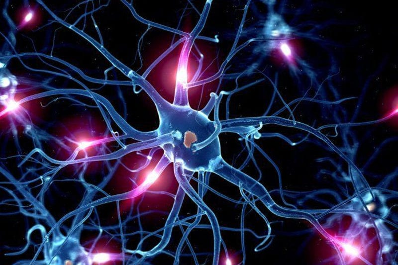 Functional Neurology: Serotonin and Brain Health