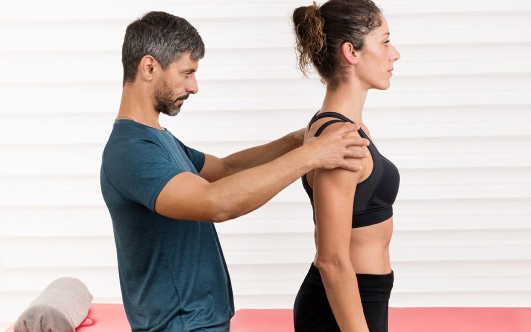 The Spinal/Vertebral Column