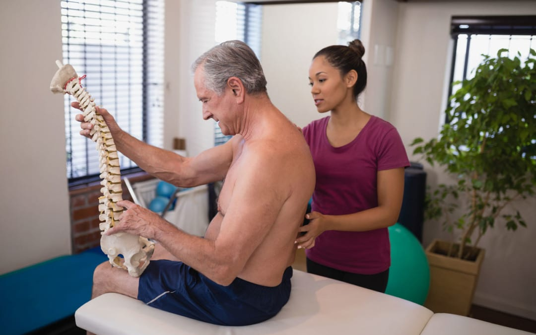 Thoracic Spine – Middle Back Basics
